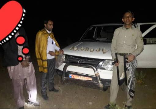 دستگیری متخلف شکار پرندگان تیهو در قلعه گنج