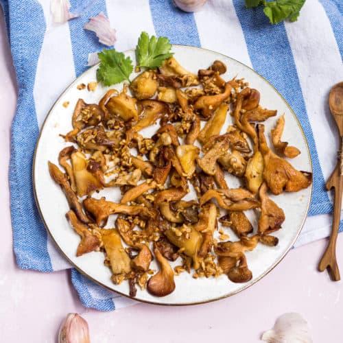 خوراک قارچ صدفی