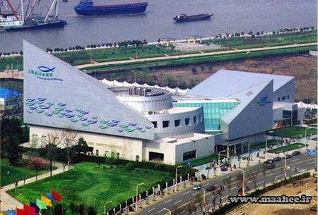 آسیا : آکواریوم عمومی اقیانوس شانگهای