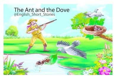 The Ant and the Dove (مورچه و قُمری)