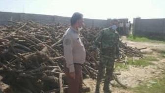 کشف و ضبط 35 تن چوب قاچاق در شهرستان دشتستان